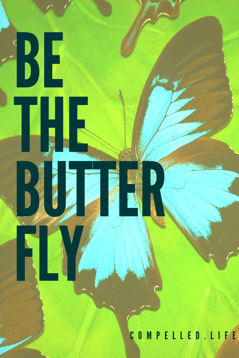 Be The Butterfly